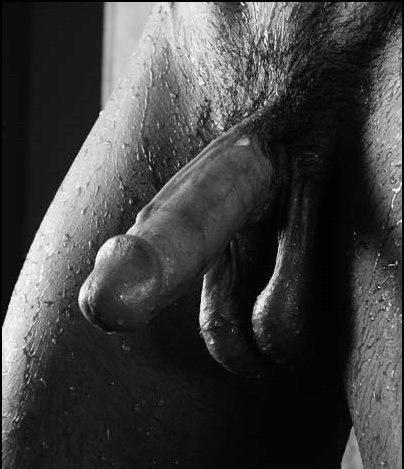 эротические фото пениса